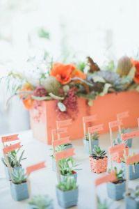 Beautiful Succulent Place cards