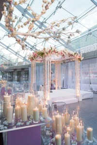 chuppah rose colored and ligths