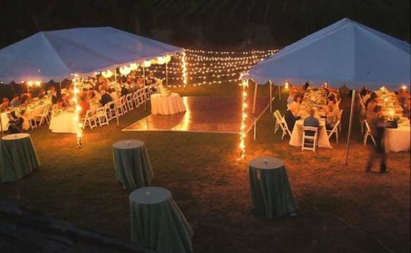 backyard-wedding-4-jj-584