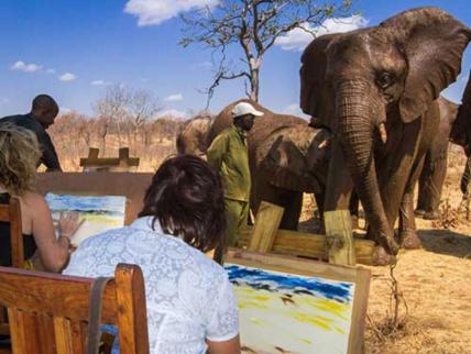 JJ pic sizes elephant art