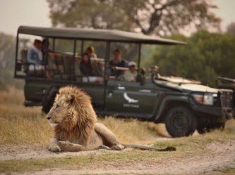 lodge okavango lodge botswana
