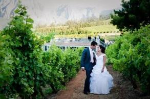 wine weddings SA